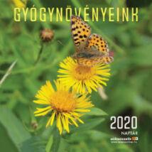 GYÓGYNÖVÉNYEINK NAPTÁR 2020
